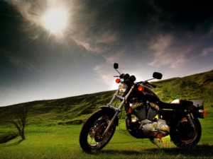 harley-davidson-motorbike-sitting-in-field-june-1998